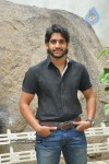 Naga Chaitanya Photos :03-08-2011