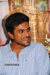 Ram Charan Teja Gallery - 10 of 27