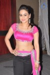 Aksha Hot Gallery :30-10-2013