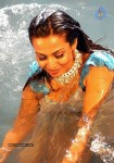 Flora Saini Hot Gallery :16-04-2014