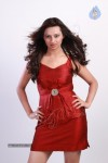 Isha Chawla Photo Shoot :27-12-2013