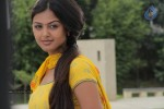 Monal Gajjar New Gallery :07-12-2012