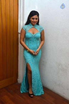 Nikesha Patel Latest Photos :17-11-2015