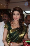 Pranitha New Photos :02-05-2014