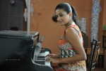 Priyamani New Stills :03-01-2013