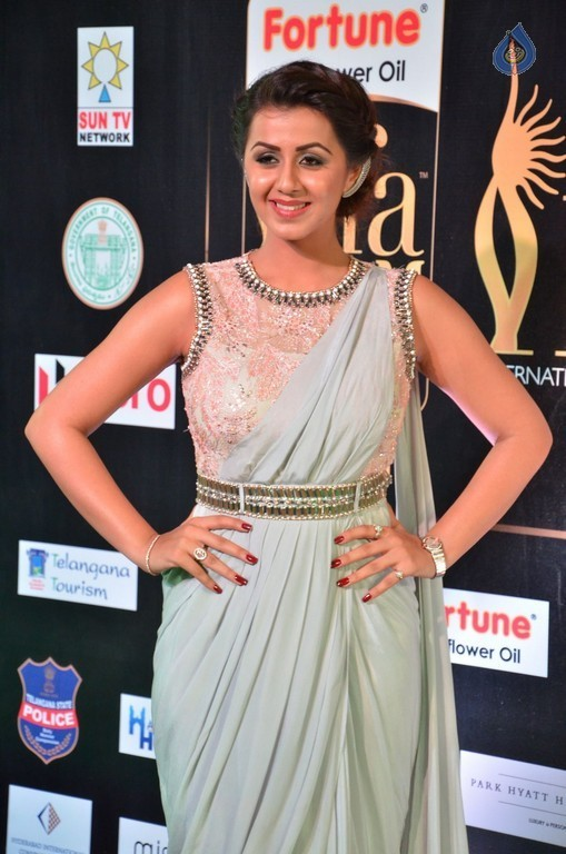 Nikki Galrani Pics - 5 / 30 photos