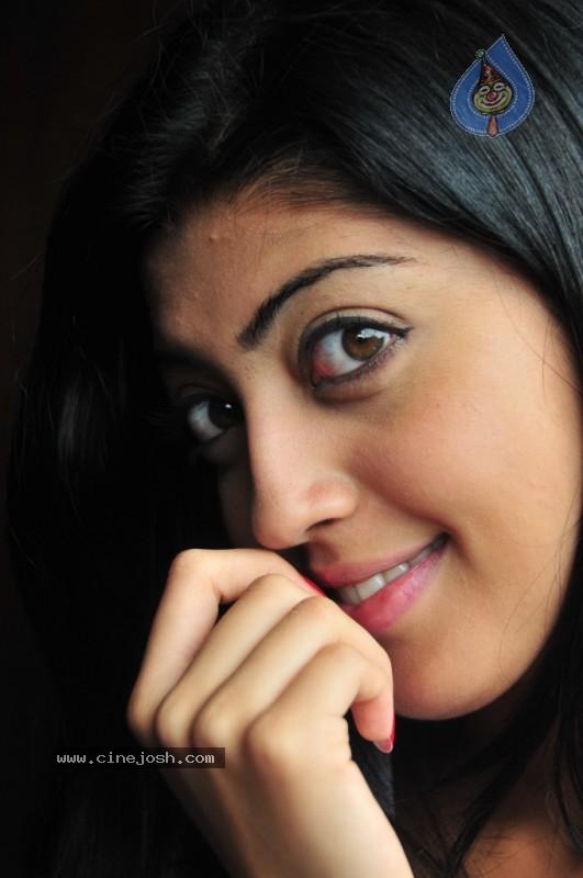 Related For Actress Pranitha Gallery Praneetha Hot Photos Praneetha