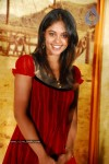 Bindu Madhavi Latest  Gallery - 9 of 41