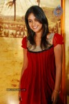 Bindu Madhavi Latest  Gallery - 12 of 41