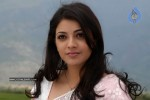 Kajal Agarwal New Stills - 21 of 41