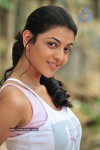 Kajal Photos - 1 of 60