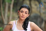 Kajal Photos - 11 of 60