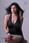 Nandini Hot Photo Gallery - 2 of 59