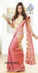 Nayanthara New Photos In Saree - 4 of 16