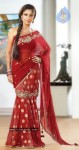Nayanthara New Photos In Saree - 10 of 16