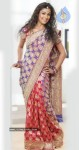 Nayanthara New Photos In Saree - 13 of 16