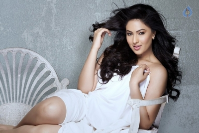 Nikesha Patel Photo Shoot Photos - 7 of 9