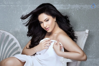 Nikesha Patel Photo Shoot Photos - 8 of 9