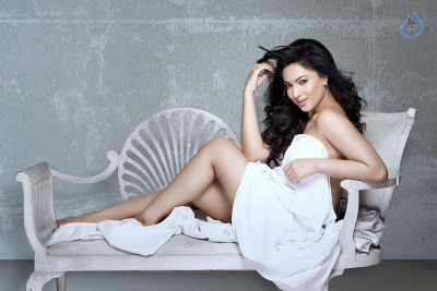 Nikesha Patel Photo Shoot Photos - 9 of 9