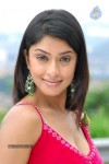 payal-ghosh-hot-gallery