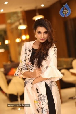 Payal Rajput New Photos - 5 of 17