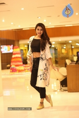 Payal Rajput New Photos - 16 of 17