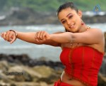 Priyamani Spicy Stills - 19 of 68