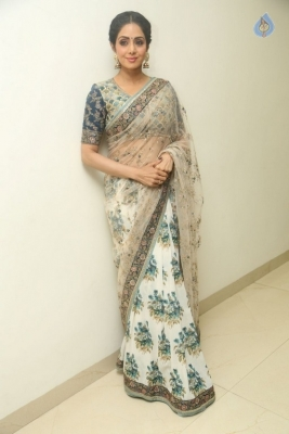Sridevi Kapoor Photos - 19 of 38