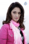 Tamanna Hot Photo Gallery - 1 of 82