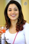 Tamanna Hot Photo Gallery - 17 of 82