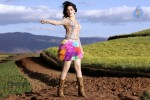 Tamanna Hot Photo Gallery - 18 of 82