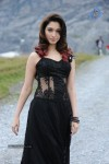 Tamanna Hot Photos - 15 of 151