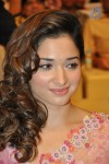 Tamanna Photos - 7 of 40