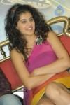 Tapsee Latest Pics - 16 of 49
