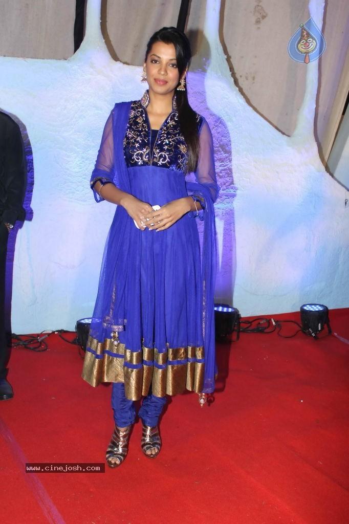 Suhail and Sandhya Wedding Reception - Photo 40 of 53