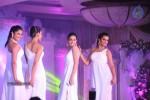 celebs-at-shehnai-2013-show