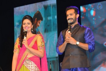 Nenu Local Audio Launch 3