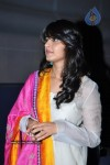 Anushka at Nanna Movie Audio Launch - 14 / 56 photos - event images