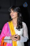 Anushka at Nanna Movie Audio Launch - 15 / 56 photos - event images