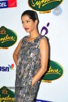 celebs-ramp-walk-at-signature-sensations-fasions-week