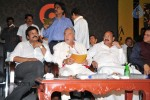 Chiru at Nellore S2 Multiplex Launch - 4 of 42