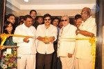 Chiru at Nellore S2 Multiplex Launch - 17 of 42