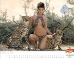kingfisher-calendar-2011