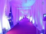 memu-saitam-dinner-with-stars-red-carpet-01