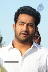 Nandamuri Family Members pays Tributes to Sr NTR  - 11 of 58