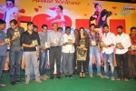 Nuvva Nena Movie Audio Launch - 13 of 204