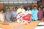 real-star-movie-audio-launch