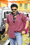 Venky Bodyguard Movie Stills