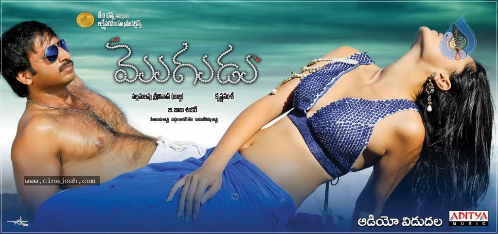 Mogudu Movie Wallpapers - Click for next photo