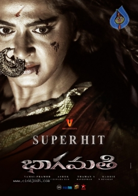 Image result for bhaagamathie